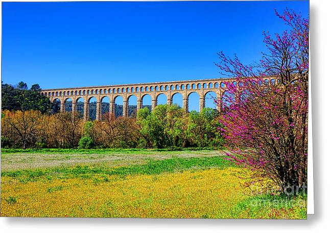 Roquefavour Aqueduct Greeting Card by Olivier Le Queinec