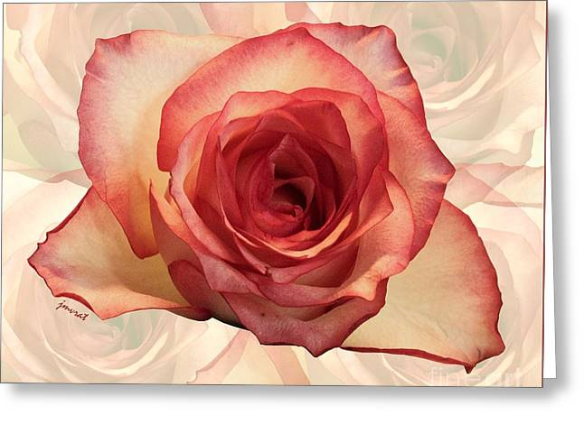 Yes Love Rose M11 Greeting Card by Johannes Murat
