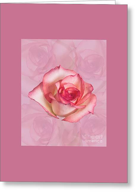 Yes Love Rose M20 Greeting Card