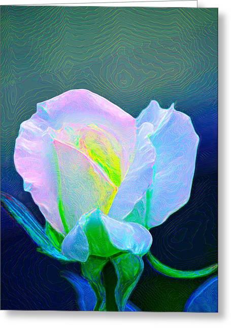 Rose 86 Greeting Card by Pamela Cooper