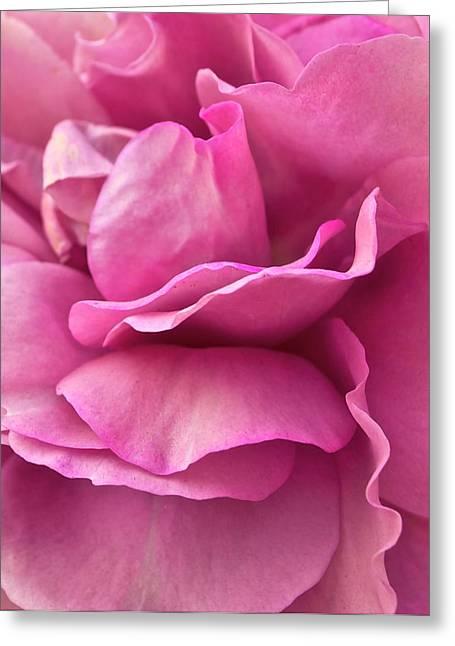 Rose Affair Greeting Card by Gwyn Newcombe