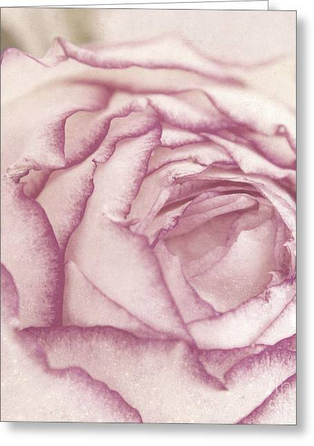 Rose Greeting Card by Angela Doelling AD DESIGN Photo and PhotoArt