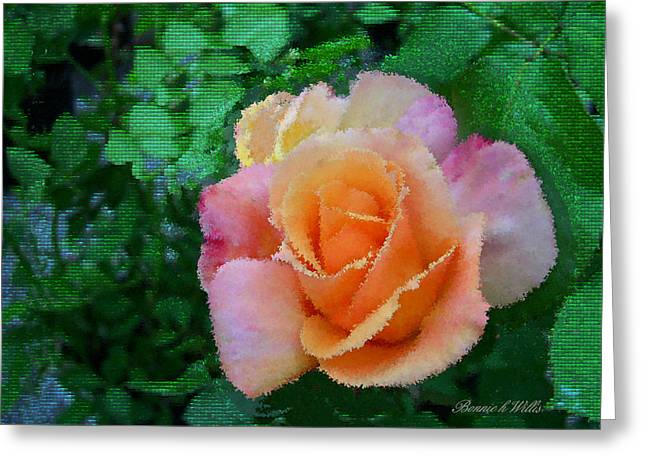 Greeting Card featuring the photograph Rose by Bonnie Willis