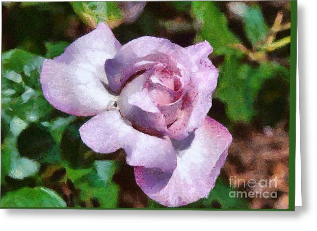 Greeting Card featuring the digital art Rose by Fran Woods