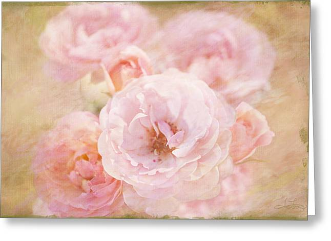 Rose Garden 1 Greeting Card