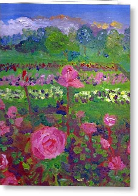 Rose Gardens In Minneapolis Greeting Card