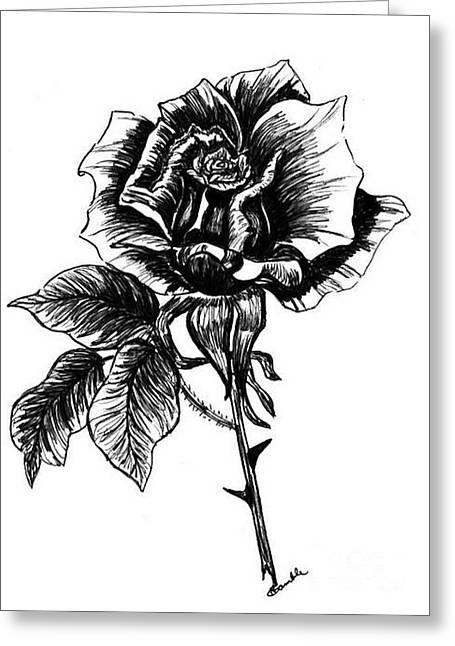 rose I  Greeting Card by Nancy Rucker