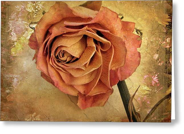 Rose  Greeting Card by Jessica Jenney