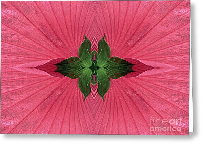 Rose Mallow Composition Greeting Card