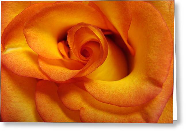 Rose Marie Greeting Card