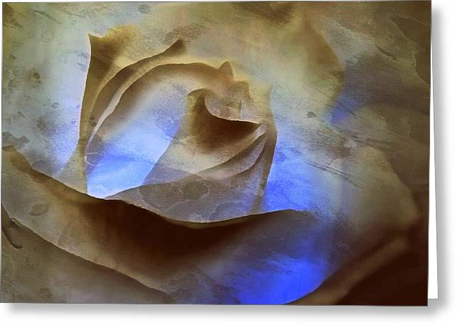 Greeting Card featuring the photograph Rose - Night Visions  by Janine Riley