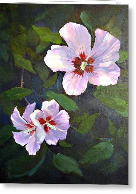 Althea Paintings Greeting Cards - Rose of Sharon Greeting Card by Jimmie Trotter