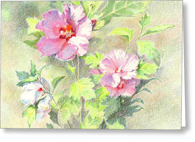Greeting Card featuring the painting Rose Of Sharon by Vikki Bouffard