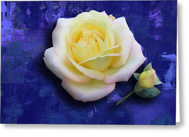 Rose On Blue Greeting Card by Morgan Rex