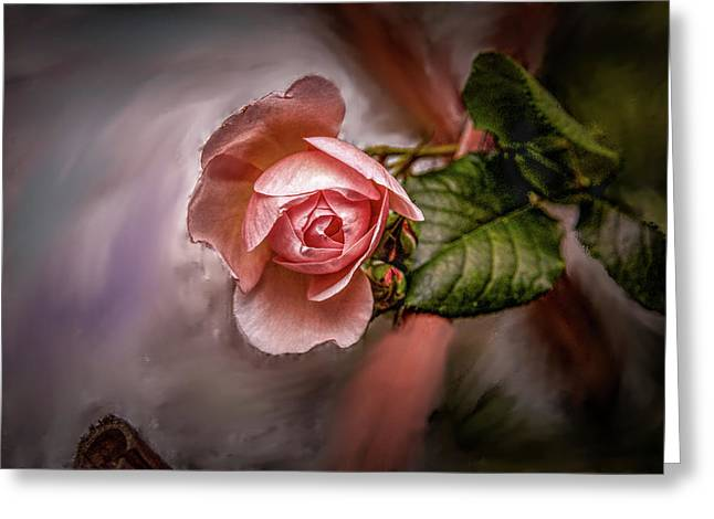 Rose On Paint #g5 Greeting Card
