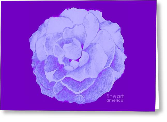 Rose On Purple Greeting Card by Helena Tiainen