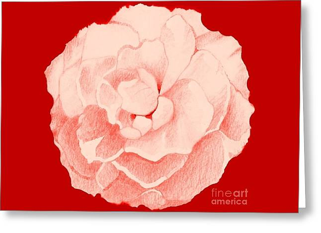 Rose On Red Greeting Card by Helena Tiainen