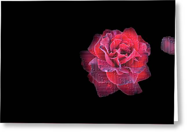 Rose On Square Pattern Greeting Card by Nat Air Craft