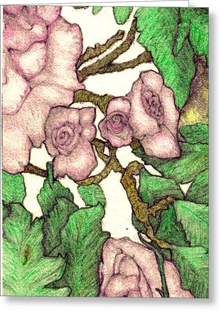 Rose Panel No 2 Greeting Card by Edward Ruth