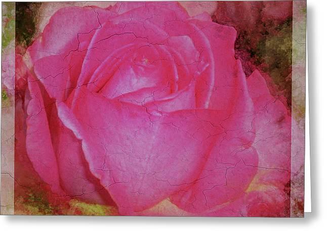 Rose Pastel Soft Sorbet 3 Greeting Card