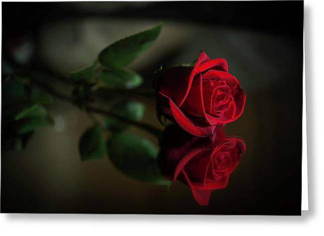Rose Reflected Greeting Card