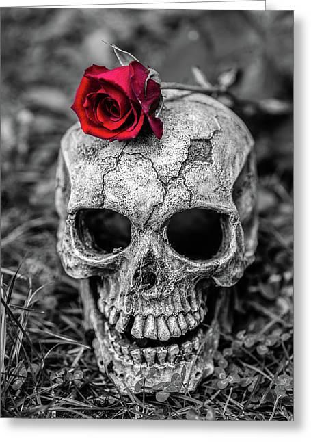 Rose Skull Greeting Card by Martina Fagan