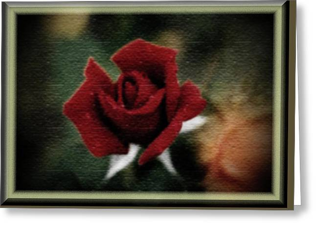 Rose Texere Greeting Card