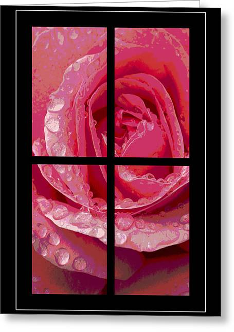 Rose Window Greeting Card