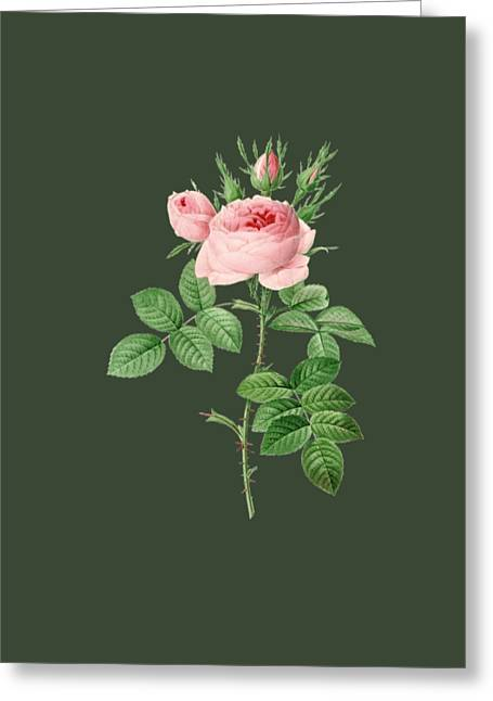 Rose22 Greeting Card by The one eyed Raven