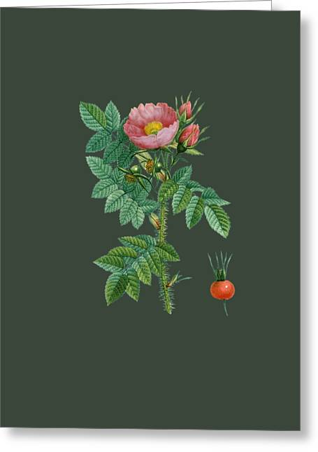 Rose9 Greeting Card by The one eyed Raven