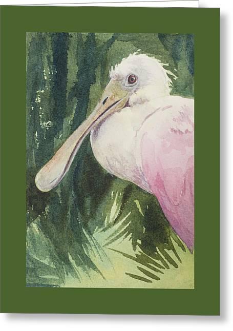 Roseate Spoonbill Greeting Card by Kris Parins