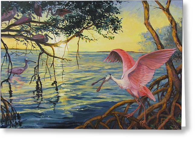 Roseate Spoonbills Among The Mangroves Greeting Card by Dianna  Willman