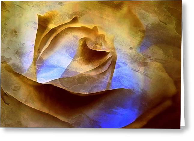 Greeting Card featuring the photograph Rosebud - Till We Meet Again by Janine Riley