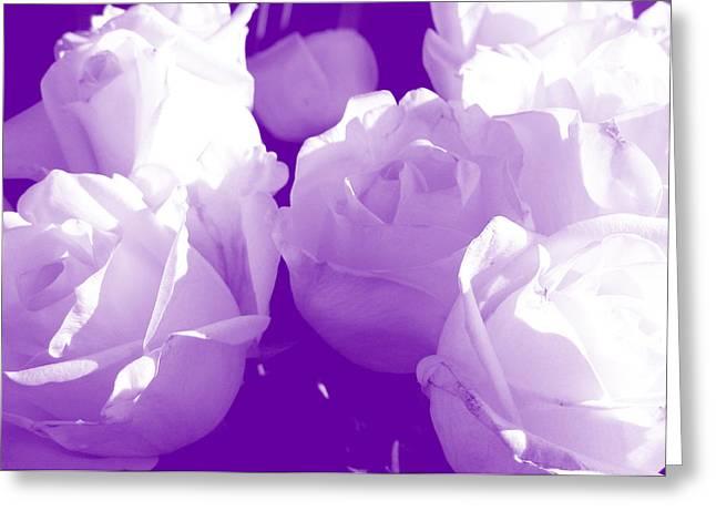Roses #7 Greeting Card