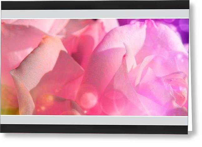 Roses #9 Greeting Card