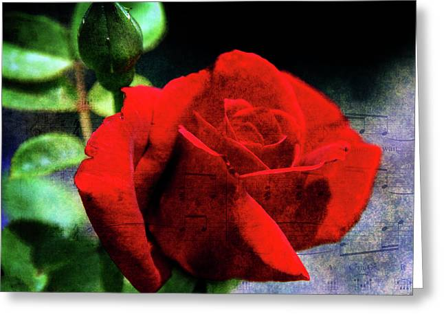 Roses Are Red My Love Greeting Card by Susanne Van Hulst