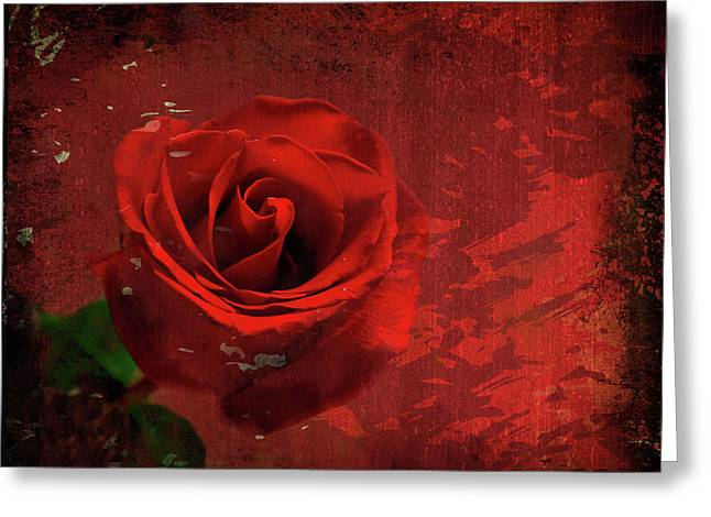 Greeting Card featuring the photograph Roses Are Still Red by Bonnie Willis