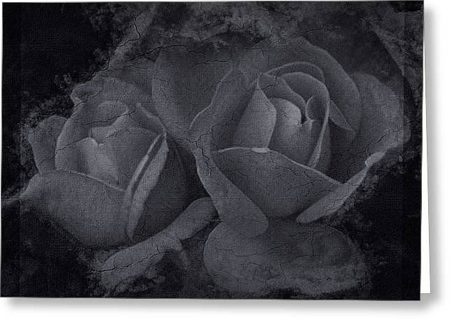 Roses Black White 4 Greeting Card
