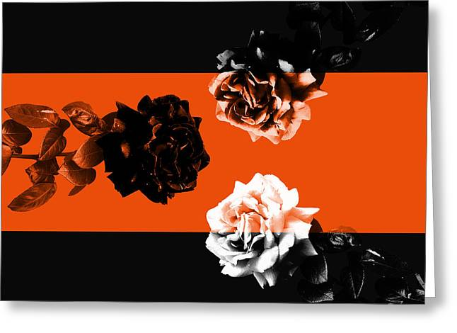 Roses Interact With Orange Greeting Card by Cesar Padilla