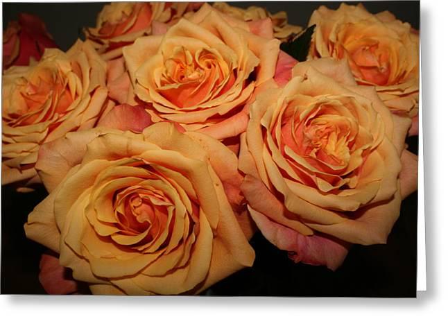Roses Greeting Card by Linda Hardin