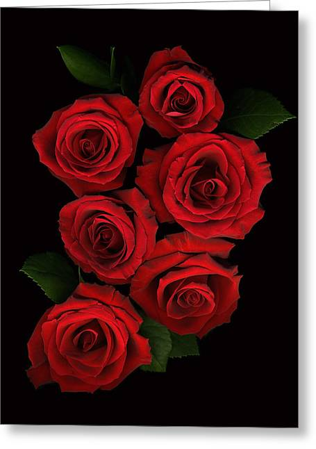 Roses Of Love Greeting Card