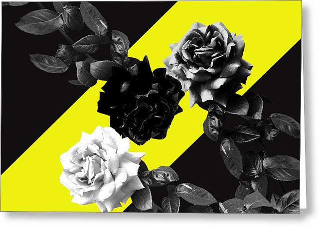 Roses Versus Yellow Greeting Card