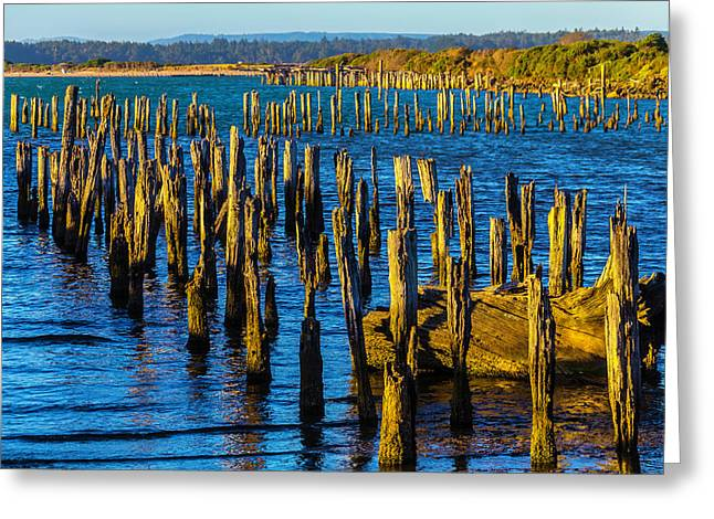 Rotting Pier Posts Greeting Card