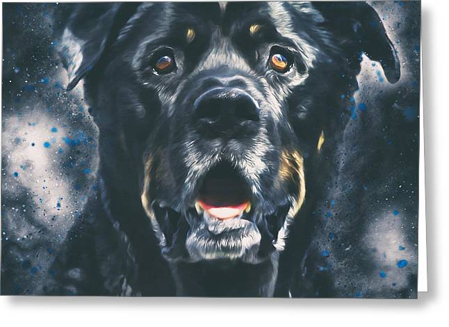 Rottweiler Portrait Greeting Card by Wolf Shadow  Photography