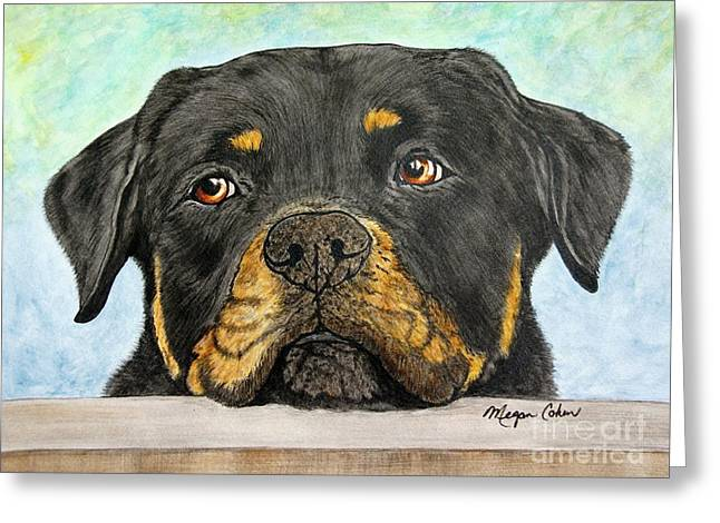 Rottweiler's Sweet Face 2 Greeting Card by Megan Cohen