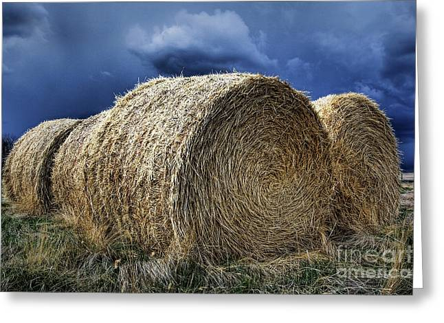 Greeting Card featuring the photograph Round Bales by Brad Allen Fine Art