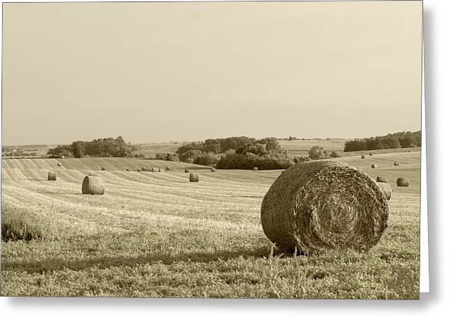 Greeting Card featuring the photograph Round Bales by John Hix