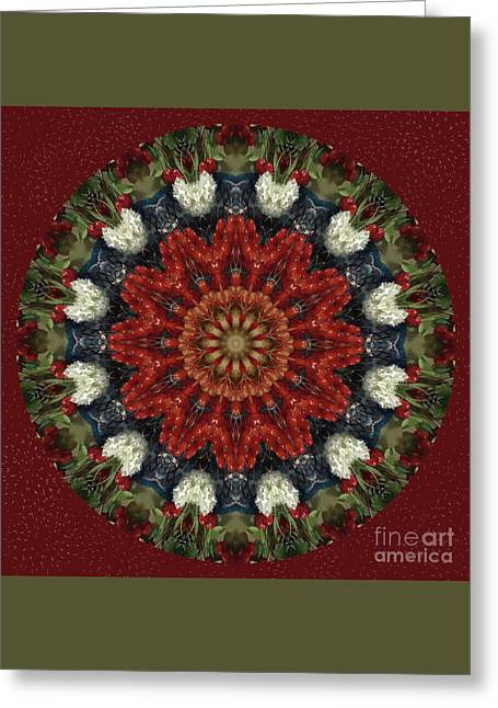 Round Fruit Kaleidoscope Greeting Card by Chellie Bock