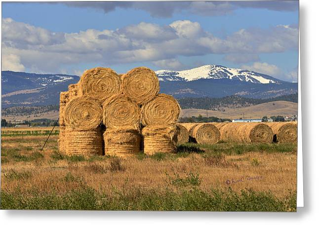 Round Hay Bales And Mountain Greeting Card