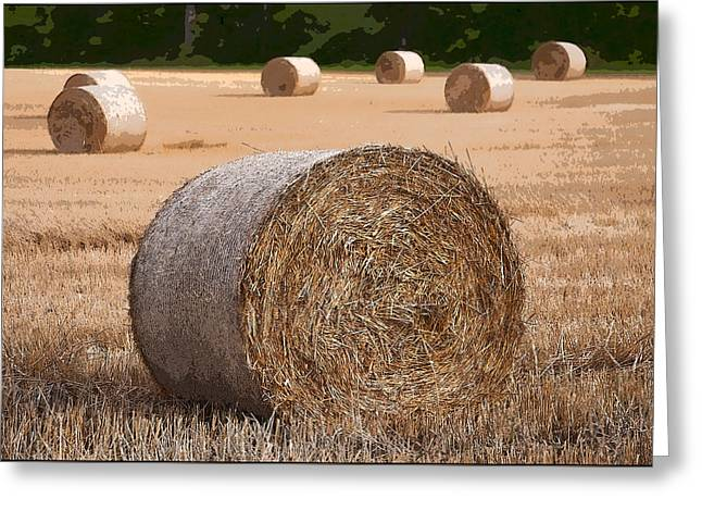 Round Hay Bales In A Swiss Field Greeting Card